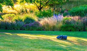 Read more about the article Best Robot Lawn Mowers for Large Lawns